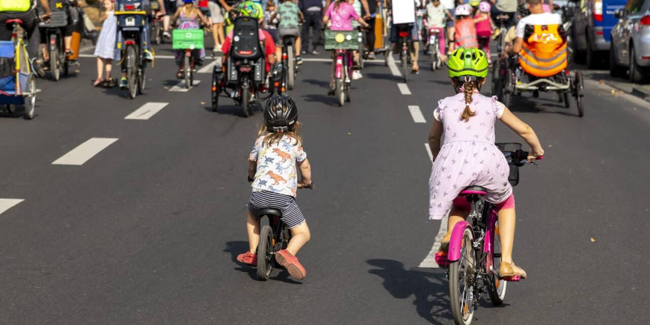 Platz da für die nächste Generation! // Make way for the next generation!